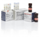 Набор Yfiler Plus PCR Amplification Kit